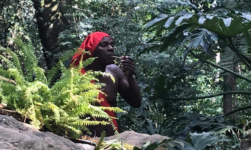 Visita a Monteiro Lobato: alunos da Educação Infantil e Ensino Fundamental viajam ao Sítio do Picapau Amarelo
