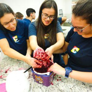 Em atividade interdisciplinar, estudantes do Ensino Médio produzem suas próprias tintas naturais