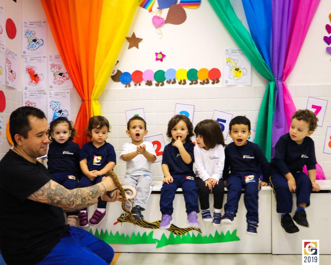 Projeto Animais: crianças da Educação Infantil recebem a visita de uma cobra em sala de aula