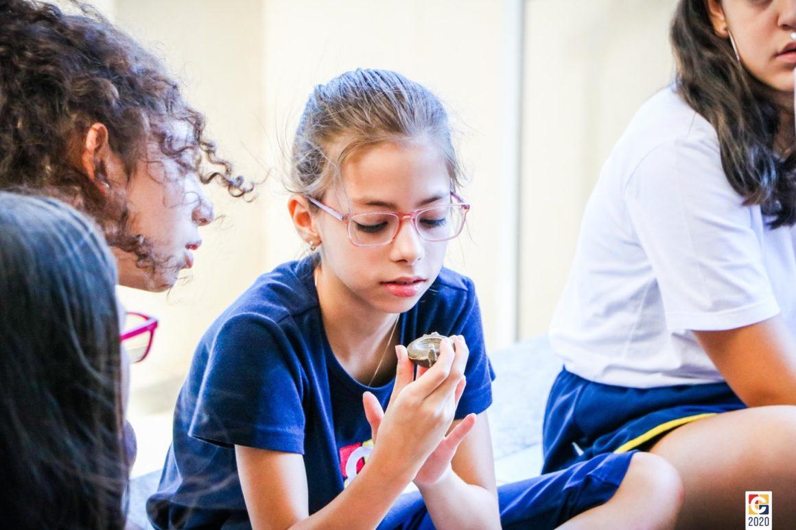 Histórico: com objetos reais, estudantes de 6º ano mergulham em atividade sobre arqueologia e etnologia